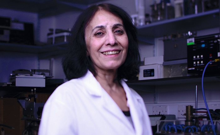Munira Kadhim, Professor in Radiation Biology,
